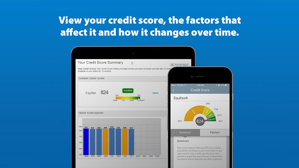 View your credit score, the factors that affect it and how it changes over time.